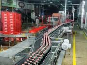 Tin tức thị trường - Coca-Cola sản xuất bình thường trở lại các thực phẩm bổ sung