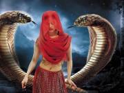 """Xem & Đọc - """"Xà nữ báo thù"""" - Phim truyền hình """"bom tấn"""" của Ấn Độ"""