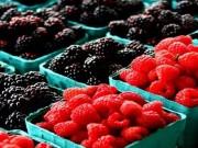 Sức khỏe - 8 thực phẩm giúp cơ thể giữ đủ nước