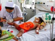 Tin tức - Chỉ trong tháng 7 có 5.561 trường hợp mắc, 2 trường hợp tử vong do sốt xuất huyết