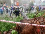 Tin tức - Hà Nội: Một người chết, 5 người bị thương vì mưa bão