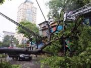 Tin tức - Chùm ảnh: Hà Nội tan hoang, đổ nát sau trận mưa bão sáng nay