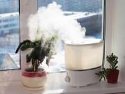 Nhà đẹp - 20 cách diệt trừ bụi 'oanh tạc' trong nhà
