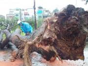 Tin tức - Hà Nội ra công điện khẩn ứng phó bão số 2