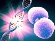Tin tức sức khỏe - Chủ động thải độc tế bào ngăn ngừa ung bướu do thực phẩm bẩn