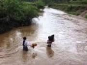 Tin tức - Thanh Hóa: Bé trai 5 tuổi bị mưa lũ cuốn trôi trong đêm