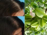 Làm đẹp - Khắc phục rụng tóc mùa thu bằng khế chua hiệu quả