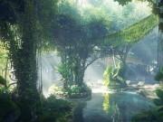 Nhà đẹp - Ngỡ ngàng rừng nhiệt đới mát rượi trong khách sạn chọc trời