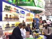 Tin tức thị trường - Chuyến xuất ngoại đầu tiên của Vinamilk