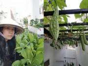 Nhà đẹp - Đột nhập vườn rau trăm loại của mẹ trẻ 8X Sài Thành