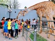 Xem  &  Đọc - Quốc Khánh 2/9: Những địa điểm vui chơi hấp dẫn cho các bé ở Hà Nội
