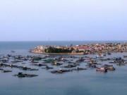 Ngày mới - Cá chết hàng loạt ở Thanh Hóa do thủy triều đỏ?