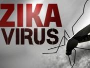 Tin tức - Bộ Y tế họp khẩn cùng 11 nước ASEAN nhằm đối phó với virus Zika