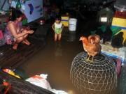 Tin tức - Nhiều căn bệnh nguy hiểm đe dọa hàng triệu người dân Sài Gòn sau mưa ngập