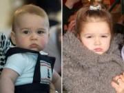 Làng sao sony - Hoàng tử nhí và Harper được yêu thích nhất nước Anh