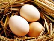 Sức khỏe - Cảnh báo nguy hiểm khi ăn trứng thường xuyên