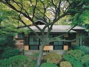 Nhà đẹp - Xanh mát nhà sinh thái cổ 80 năm tuổi