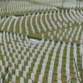 Tin quốc tế - Quan chức TQ mua 'xác chết' để đủ 'định mức' hỏa táng