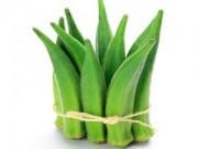 Sức khỏe - Những lợi ích khó ngờ từ đậu bắp
