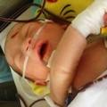 Tin trong nước - Khen thưởng người đưa bé bị văng khỏi bụng mẹ đi cấp cứu