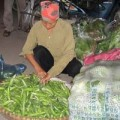 Tin tức - Giật mình quy trình biến rau Trung Quốc thành rau nội