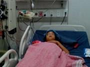 Tin trong nước - Bé gái bị ong vò vẽ đốt gần 170 mũi gây suy gan