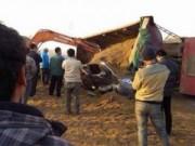 Tin tức - TQ: Tai nạn xe bus, 11 trẻ mầm non thiệt mạng