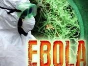 Tin tức - WHO: Gần 7.000 người tử vong do Ebola