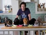 Nhà đẹp - Chàng độc thân chi 700 triệu sửa nhà cho 18 chú mèo