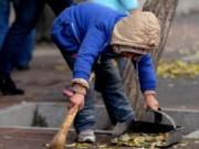 Tin tức - TQ: Bé 6 tuổi đi quét rác vì nhà trường từ chối nhận