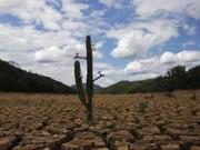 Tin tức - Năm 2014 nóng nhất kể từ giữa thế kỷ 19?