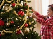Nhà đẹp - Dạo phố cổ chọn cây Giáng Sinh phù hợp diện tích nhà