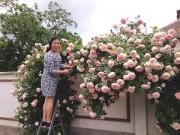 Nhà đẹp - Mảnh vườn Việt đáng ngưỡng mộ trên đất Hungary