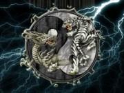 Nhà đẹp - Bày Rồng - Hổ trong nhà sai cách, thế hệ sau ảnh hưởng nặng nề