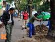 Tin tức - HN: Người dân viết đơn xin giữ lại hàng cây trước cửa nhà