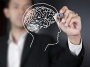 Sức khỏe - 8 điều thú vị có thể bạn chưa biết về bộ não