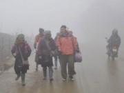 Tin tức - Hà Nội xuống 8 độ C, Sapa phủ trắng sương muối