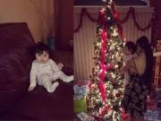 Làng sao - Con gái Elly Trần thích thú ngắm cây thông Noel