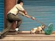 Tin tức - Trộm chó, 2 người bị đánh chết tại chỗ