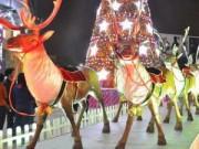 Eva tám - Lại nhớ thành phố của Giáng sinh