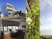 Nhà đẹp - Nghệ An: Vợ chồng nghỉ hưu xây nhà xanh mướt mặt tiền rau