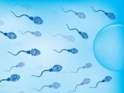 Bà bầu - Những món ngon hủy hoại tinh trùng nam giới
