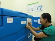 Đường đi của vắc xin từ tuyến tỉnh đến xã, phường
