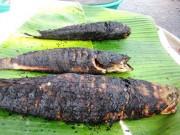 Tin tức - Hai trẻ tử vong sau khi ăn cá lóc nướng