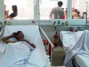 Tin tức - Nghệ An: Ăn phải cá nóc độc, 8 người nhập viện cấp cứu
