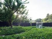 Nhà đẹp - Độc đáo với nhà vệ sinh 'lộ thiên' yên bình nhất quả đất