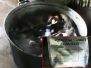 Mua sắm - Giá cả - Kinh hãi thịt bò khô làm từ phổi heo và hóa chất