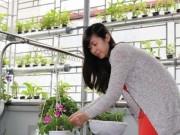 Nhà đẹp - Nữ nhân viên xinh đẹp tự trồng rau ăn quanh năm không hết