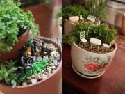 Nhà đẹp - Mẹ bỉm sữa trồng vườn mini đẹp mê hồn