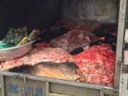 """Tin tức - HN: Bắt giữ gần 1 tấn nội tạng, da trâu bò """"ngậm"""" thuốc bảo quản"""